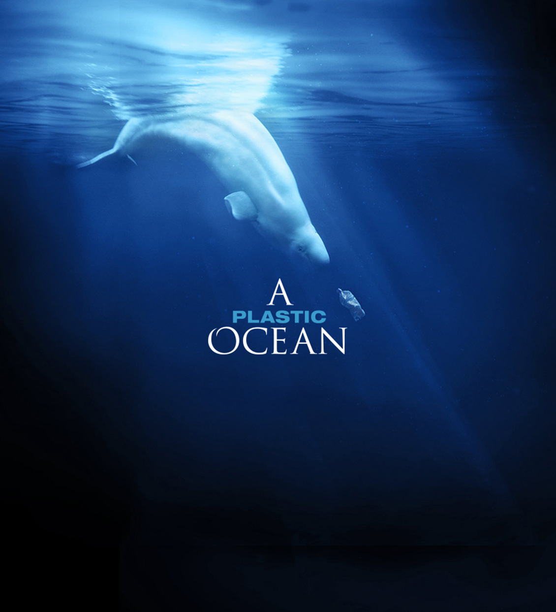 A Plastic Ocean Film Showing April 19th